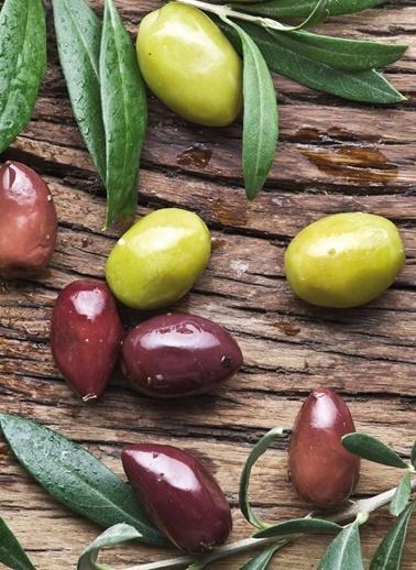Olive Harvest Peçete-Dünya Style